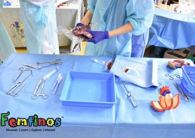Heart Surgery 13-7-19 - 0171